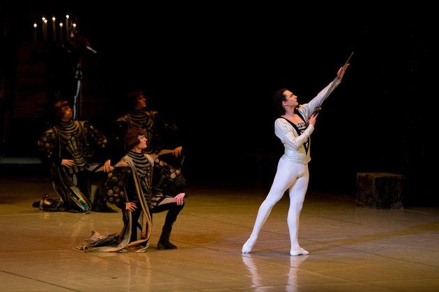 Музыкальный театр лебединое озеро краснодар купить билеты дворец в павловске концерты афиша